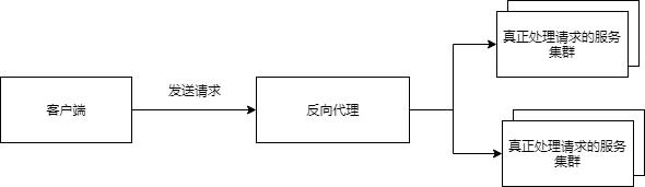 reverse-proxy.png